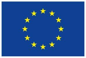 EU emblem_RGB_72dpi
